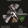 """Lecţia de pictură în cadrul expoziţiei """"Atelier Experimental"""""""