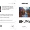 """""""Brume"""" de Vasile Igna"""