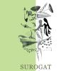 "Post-lansare: ""Surogat"" de Sorin-Mihai Grad"