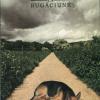 """Lucian Gruia, """"Câine în rugăciune"""""""