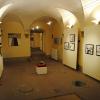Expoziţie in memoriam Anda-Livia Tomuţa (1983-2009)