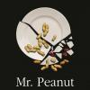 """""""Mr. Peanut"""" de Adam Ross, cel mai apreciat debut al anului 2010 în Statele Unite"""