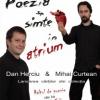 """""""Poezia se simte în atrium"""", la Sibiu"""