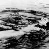 """""""Ecstasy"""", în regia lui Gustav Machatý, primul film din lume ce conţine o scenă de nuditate, la Centrul Ceh"""