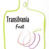 """""""Transilvania Fest"""" 2011, la Blaj"""
