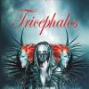 """Un roman excentric cu trei capete de dragon: """"Tricephalos"""" de Ruxandra Cesereanu"""