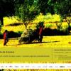 """Conferinţele de la Şosea: """"Sună clocoticii-n iarbă: începe coasa. Practici agricole şi biodiversitate"""""""