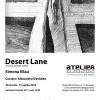 """""""Desert Lane (un jurnal aproape violent)"""" de Simona Vilău, la Atelier 030202"""