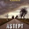 """""""Aştept răspuns"""" de Dan Chaon"""