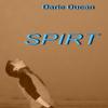 """""""Spirt"""" de Darie Ducan"""