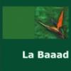 """""""La Baaad"""" de Cezar Ivănescu"""