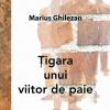 """Marius Ghilezan îşi lansează volumul """"Ţigara unui viitor de paie"""", la Bookfest 2011"""