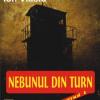 """""""Nebunul din turn"""" de Ion Vlasiu"""