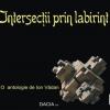 Eveniment editorial: Dacia XXI lansează peste 50 de titluri, la Baia Mare