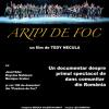 """""""Aripi de foc"""", în premieră la Cinema Arta din Cluj"""