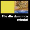 """""""File din duminica orbului"""" de Dumitru Ţigăniuc"""