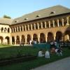 Expoziţie aniversară la Palatul Mogoşoaia