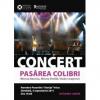 """""""Pasărea Colibri"""" în concert la românii din Voivodina (Serbia)"""