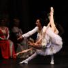Gală de balet şi de operetă la ONB