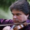 """Începe """"Duelul viorilor – Stradivarius sau Guarnieri?"""""""