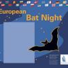 Noaptea europeană a liliecilor, la Avant-Garde Iaşi