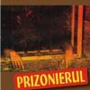 """Prizonierul"" de Vasile Iancu"