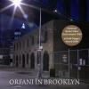 """Orfani în Brooklyn"" de Jonathan Lethem"
