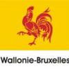 """Filme din Valonia-Bruxelles, prezentate la Festivalul de Film de Animaţie """"Anim`est"""""""