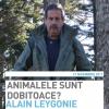 """Conferinţă la Timişoara scriitorului Alain Leygonie: """"Animalele sunt dobitoace?"""""""
