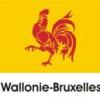 """Delegaţia Valonia-Bruxelles, prezentă din nou la """"Gaudeamus"""""""