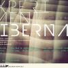 "Expoziţia ""Experiment Hibernal"" la Platforma"