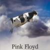 """""""Pink Floyd în roşu"""" de Michele Mari, un roman experimental dedicat legendarei trupe"""