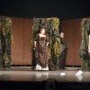 """Premiera spectacolului """"A douăsprezecea noapte"""" de Shakespeare, la Teatrul Calsic """"Ioan Slavici"""" din Arad"""