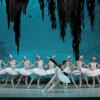 """""""Lacul Lebedelor"""", cu Natalia Matsak şi Denys Nedak, la Sala Palatului"""