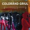 """""""Colorând Griul – Starea culorii"""", în cadrul Bienalei de Artă de la Liverpool 2012"""
