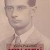 """""""Rotonda 13"""": Ovidiu Papadima"""