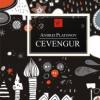 """Cevengur"" de Andrei Platonov"