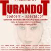 """Dezbatere despre """"Iubire, atrocitate şi grandoare în opera Turandot"""", la ONB"""