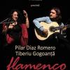 Concert de flamenco la Clubul Țăranului