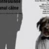 """""""Confesiunile unui câine"""", avanpremieră la Green Hours"""