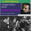Cosmin Perţa şi Trio Mircea Mutulescu, la Mogoşoaia