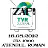 """""""Protest cu telecomandă. Un protest împotriva desființării TVR Cultural"""""""