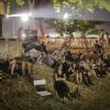 Evadare din Balcani, animaţie, documentare, filme bune, muzică și spectacole culinare
