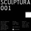 """""""instalart/sculptura/ 001″ la aiurart"""