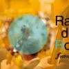 """Începe Festivalul Internațional al Orchestrelor Radio """"RadiRo"""""""