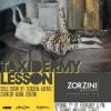 Solo show de Teodora Axente, la Zorzini Gallery