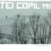 """""""Matei Copil Miner"""", în regia Alexandrei Gulea, la Festivalul Internaţional de la Rotterdam 2013"""