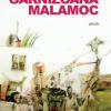 """""""Garnizoana Malamoc. Întâmplări din viaţa unui om care a trăit în vremuri năucitoare din punct de vedere istoric"""", de Ştefan Dorgoşan"""