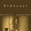 """""""Secretul lui Brâncuşi"""" de Ştefan Sgandăr"""