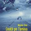 """""""Ceaţă pe Tamisa"""" de Nicolae Stan"""